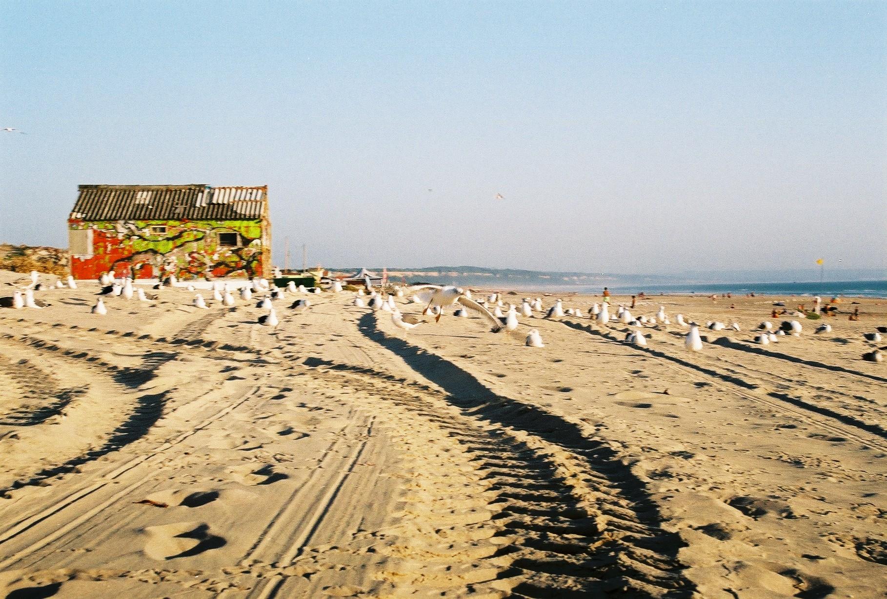 Nádherné pieskové pláže sú vzdialené len 30 minút cesty autobusom (zdroj: Barbora Adamková).
