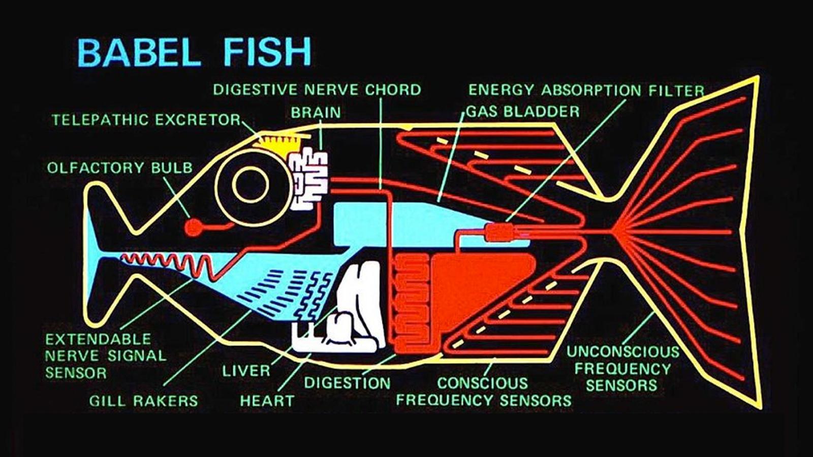 Douglasova Babylonská rybka už nie je len sci-fi