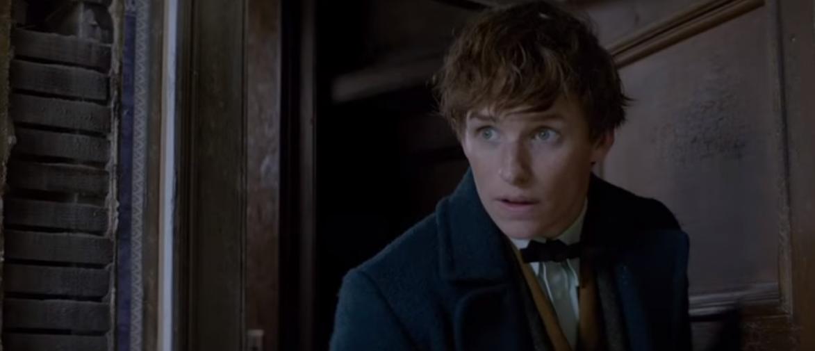 Premiéra snímky Fantastické zvery a ich výskyt sa blíži, Rowlingová prezradila novinku: Filmov bude oveľa viac!