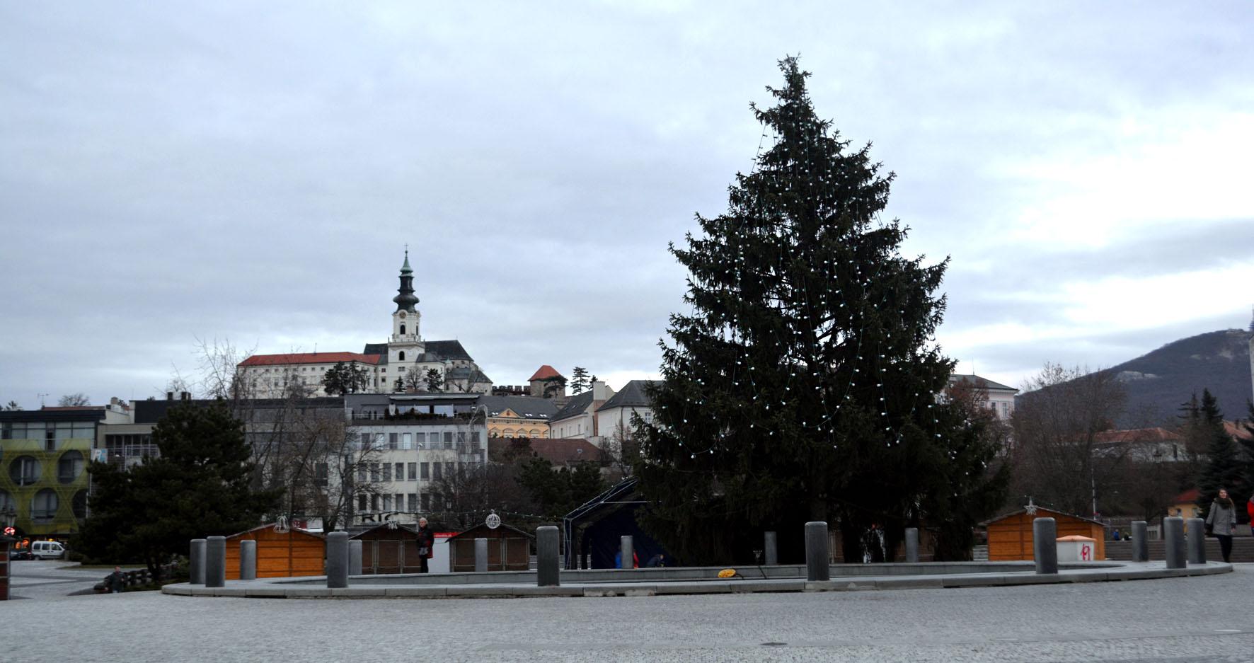 Pohľad na Vianočný strom(ček). Zdroj: Jana Paveleková