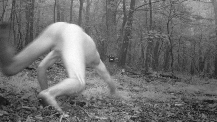 Čech sa po LSD zmenil na sibírskeho tigra! Je to vôbec možné?
