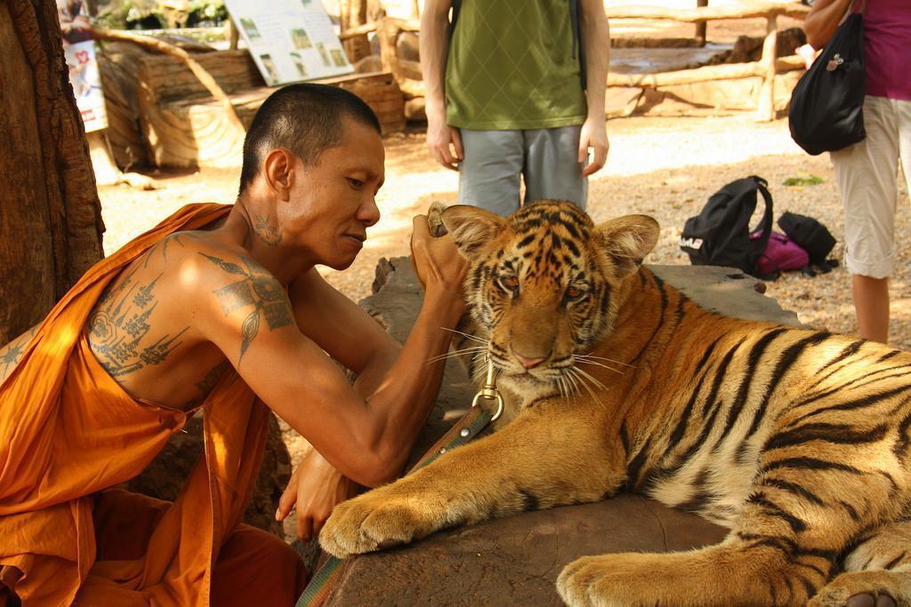 týranie zvierat