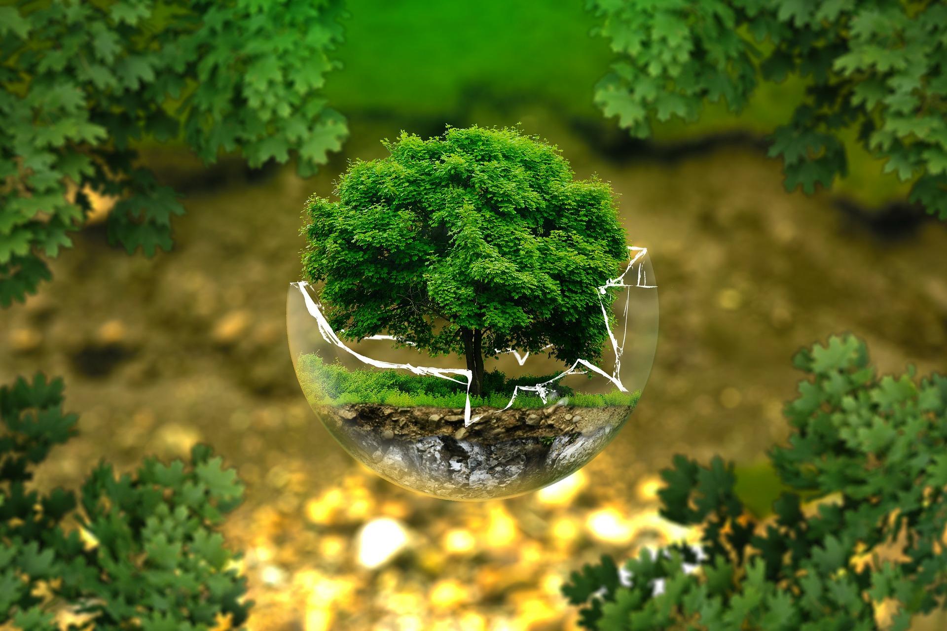 ekologická činnosť