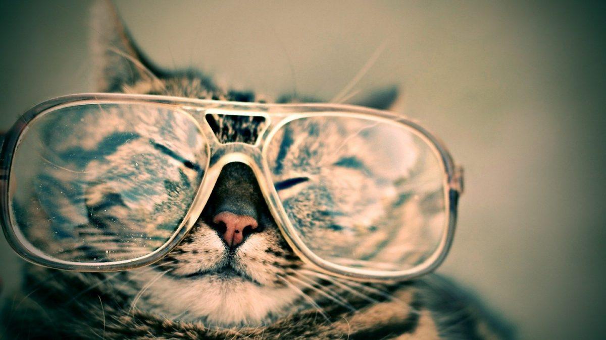3+1 vecí, s ktorými bojujú okuliarnatí ľudia